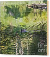 Stow Lake Idyll Wood Print