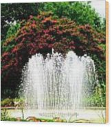 Stowe Fountain 2 Wood Print
