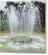 Stowe Fountain 3 Wood Print