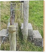 Straddle The Fence Wood Print