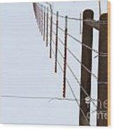 Straight Line Fence Wood Print