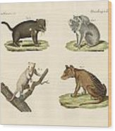 Strange Marsupials Wood Print