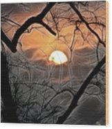 Strange Morning Wood Print
