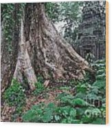 Strangler Fig Tree Roots On The Ancient Preah Khan Temple Wood Print