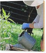 Straw Hat Gardener Wood Print