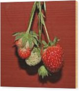 Strawberry Delicious Wood Print