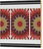 Strawberry Explosion Triptych - Kaleidoscope Wood Print