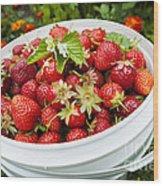 Strawberry Harvest Wood Print