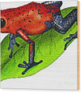 Strawberry Poison-dart Frog Wood Print