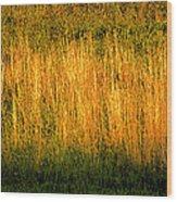 Straw Landscape Wood Print