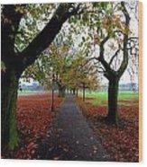 Stray Beauty In Autumn No 2 Wood Print