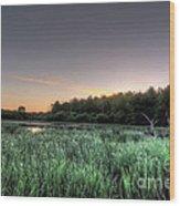 Streaky Swamp Sunrise Wood Print