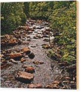 Stream Along Gros Morne Trail In Gros Morne Np-nl Wood Print