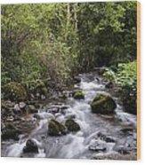 Stream At Glencar Wood Print