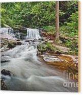 Stream At Ricketts Glen Wood Print