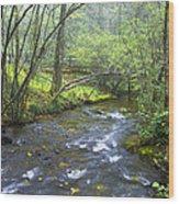 Stream Below Amicalola Falls Wood Print