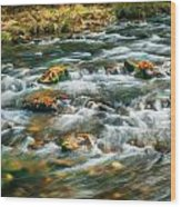 Stream Fall Colors Great Smoky Mountains Painted  Wood Print