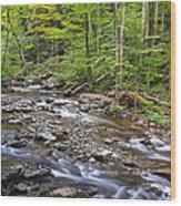 Stream Of Serenity Wood Print