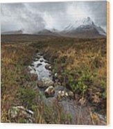Stream On Rannoch Moor  Wood Print