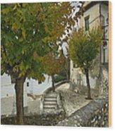street in old Albaycin in Granada Wood Print