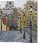 Street View In Gyor Wood Print
