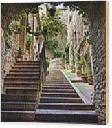 Streets Of Pisa Wood Print