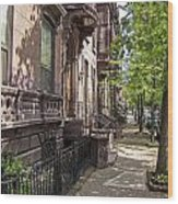Streets Of Troy New York Wood Print
