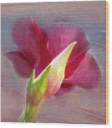 Striking Hibiscus Flower Wood Print