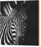 Striped Beauty Wood Print