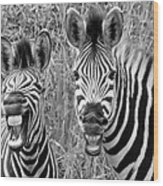 Striped Donkeys Zebra Chapman's Race Wood Print