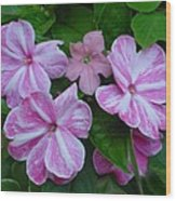 Striped Flower Wood Print