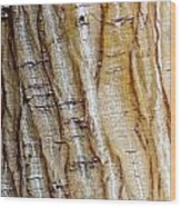 Striped Maple Wood Print
