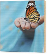 Striped Tiger Butterfly Wood Print