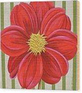 Stripes-dahlia II Wood Print
