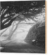 Stroll In The Fog Wood Print by Valeria Donaldson