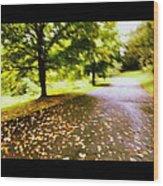 Stroll On An Autumn Lane Wood Print