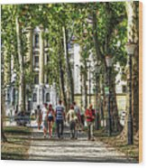 Strolling In Slovenia Wood Print