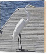 Strolling On The Dock Wood Print