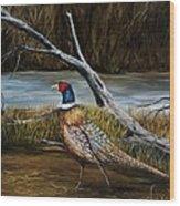 Strutting Pheasant Wood Print
