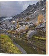 Stuart Range Meadows Reflection Wood Print