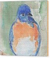 Study Of A Bluebird Wood Print