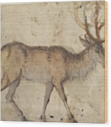 Study Of A Stag Recto,  Study Of Goats Verso Lucas Cranach Wood Print