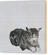 Study Of Cat Wood Print