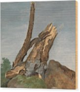 Study Of Rocks And Branches, George Augustus Wallis Wood Print