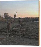 Stump Field Wood Print