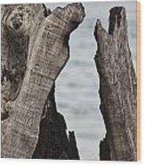 Stumped V3 Wood Print