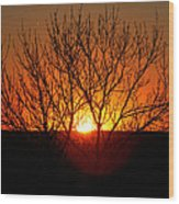 Stunning Stone Park Sunset Wood Print