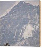 Stupa And Pandim Wood Print