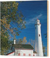 Sturgeon Point Lighthouse Wood Print