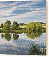 Sturminster Newton - River Stour - Dorset - England Wood Print by Natalie Kinnear